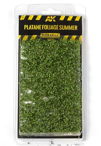 PLATANE FOLIAGE SUMMER